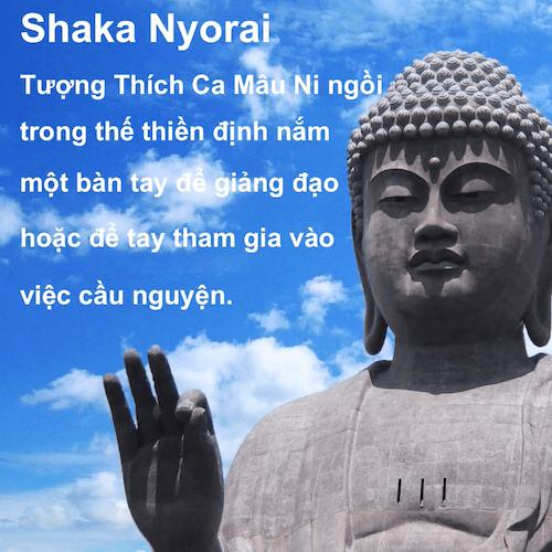 Học trong 90 giây! Xếp hạng giữa các pho tượng Phật giáo