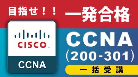 【一括受講】一発合格シリーズCCNA (200-301)【2021年改訂試験対応】