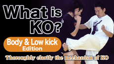 What is KO? Body and Low kick Edition